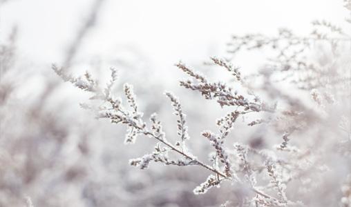 Snöskottning och snöröjning i Eksjö och Nässjö